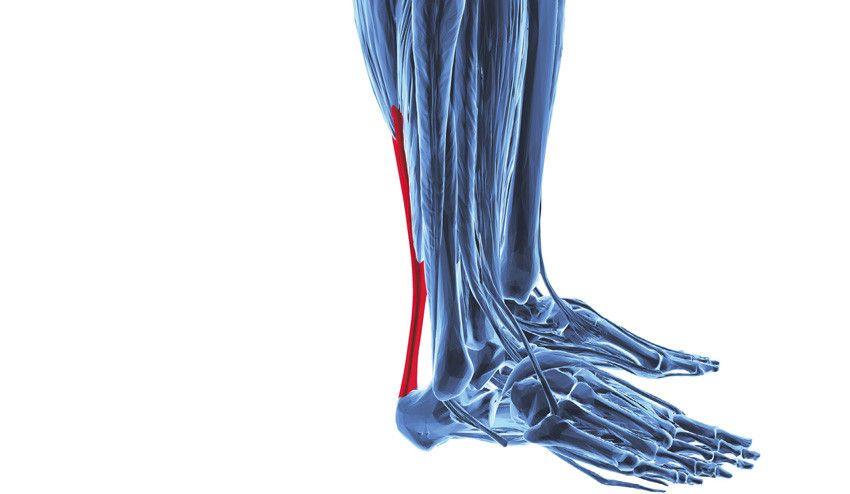 Tens dores no tendão de Aquiles? 3 causas que têm a ver com a bicicleta