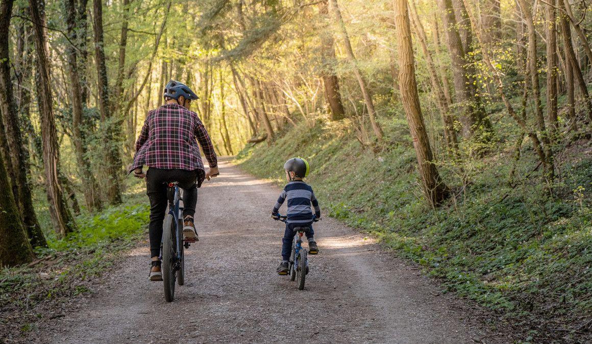 Procura de bicicletas começa paulatinamente a retomar