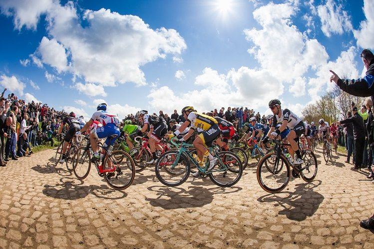 Documentário sobre Tour de Flandres e Paris Roubaix