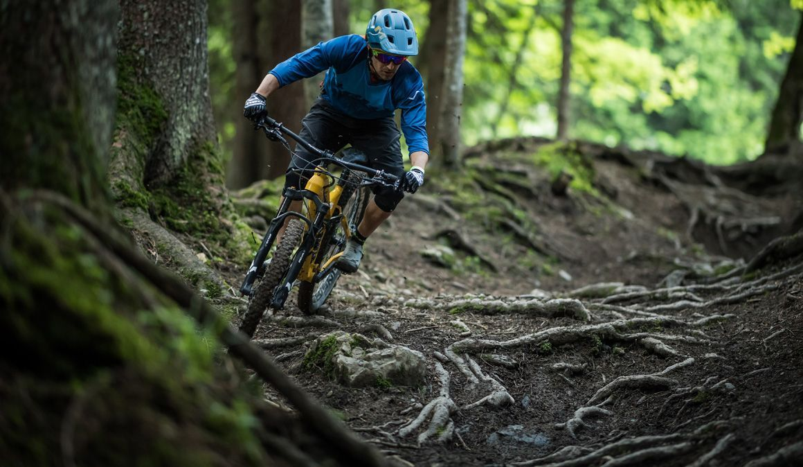 Técnica: como ultrapassar raízes molhadas