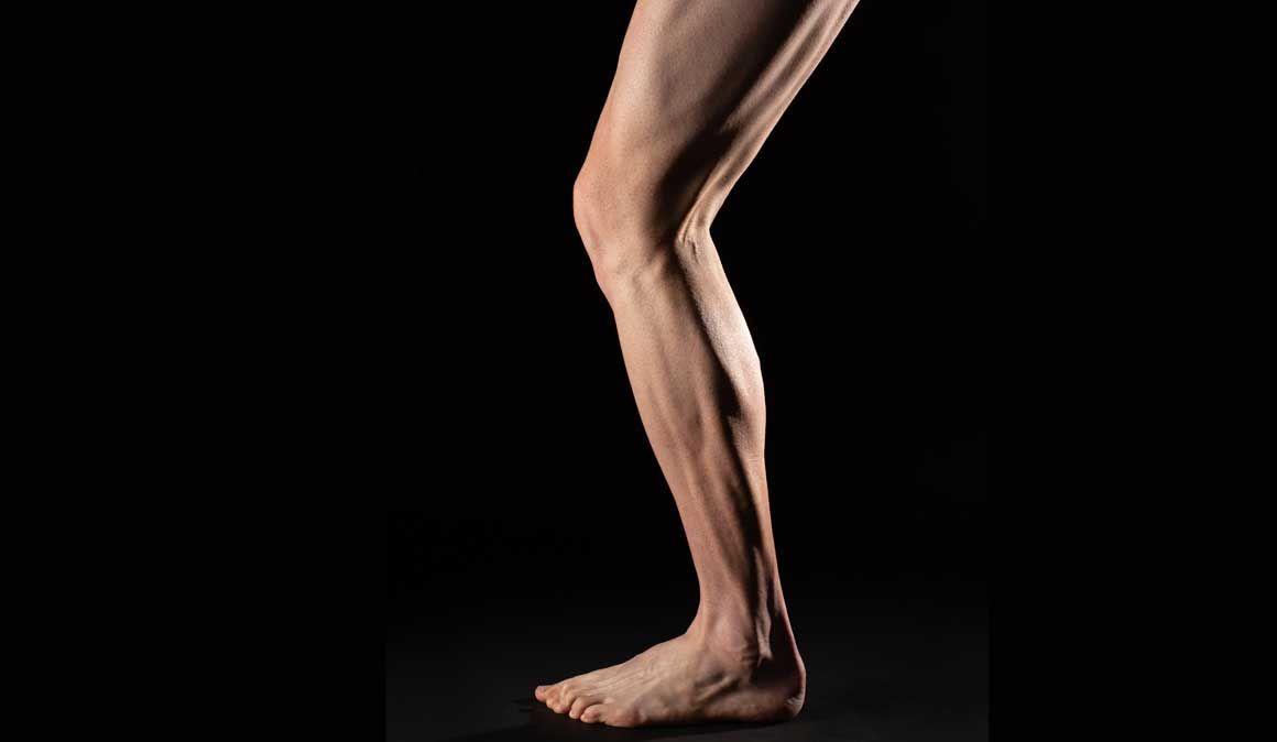 Que tipo de musculatura tenho?